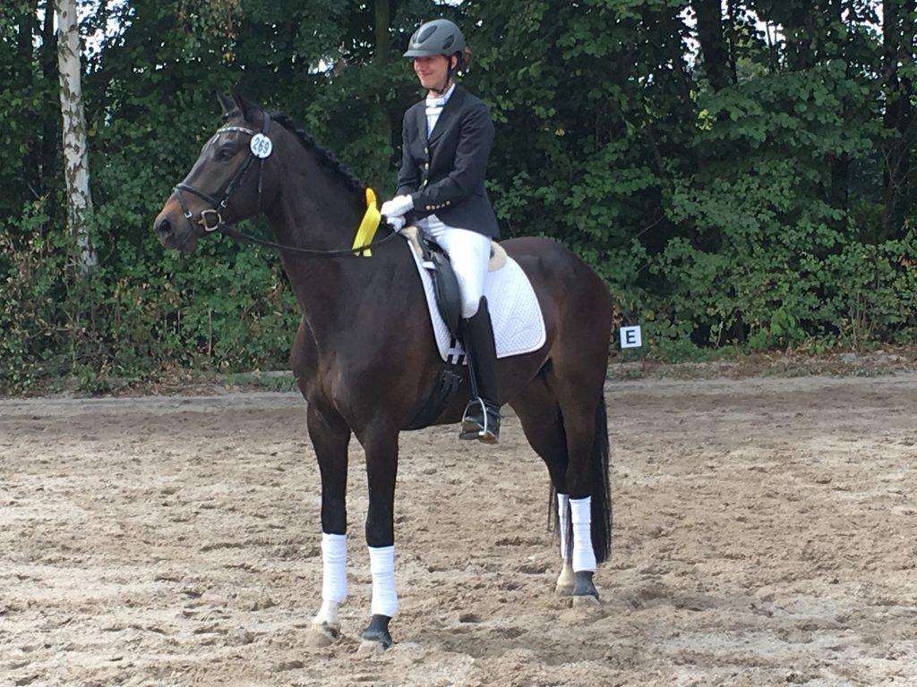 Friedrich siegt in einer Dressurpferdprüfung Kl. A in Jüchen-Hochneukirch